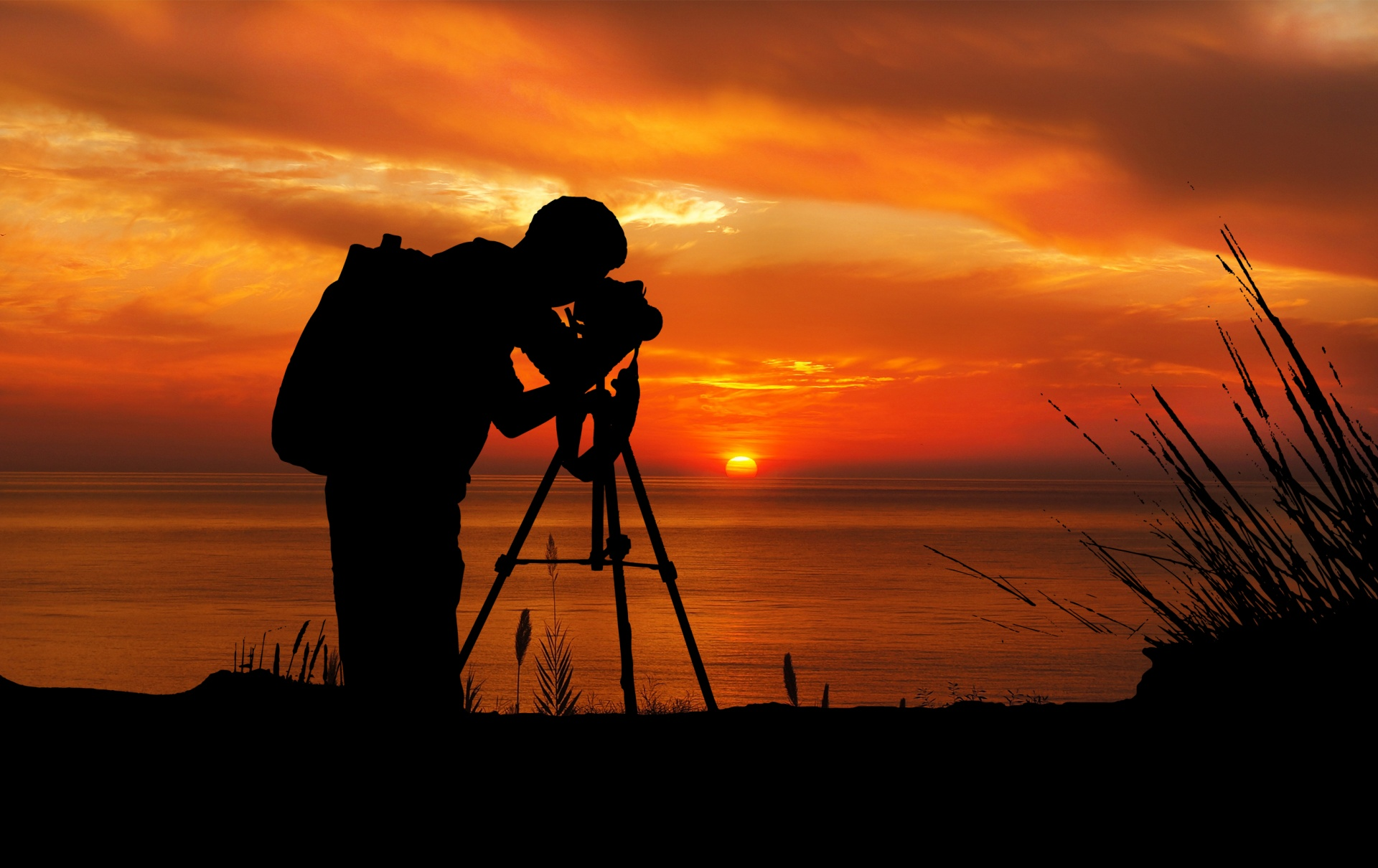 Wisbech & District Camera Club Annual Photographic Exhibition